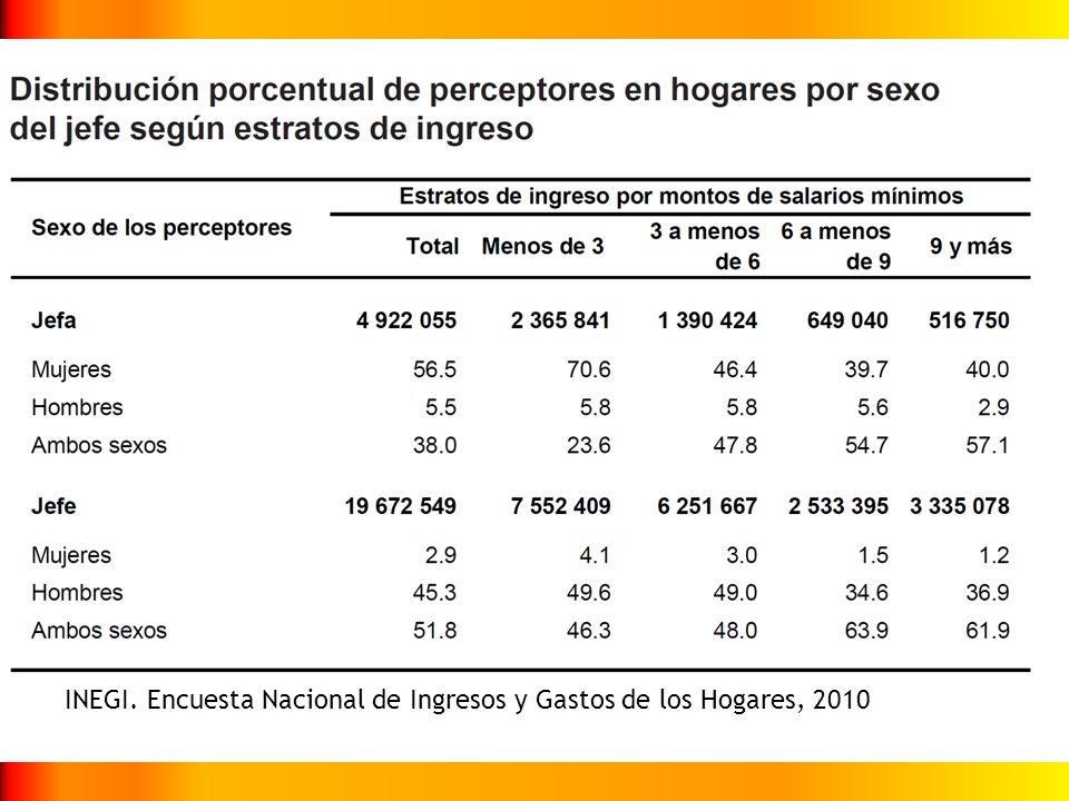 INEGI. Encuesta Nacional de Ingresos y Gastos de los Hogares, 2010