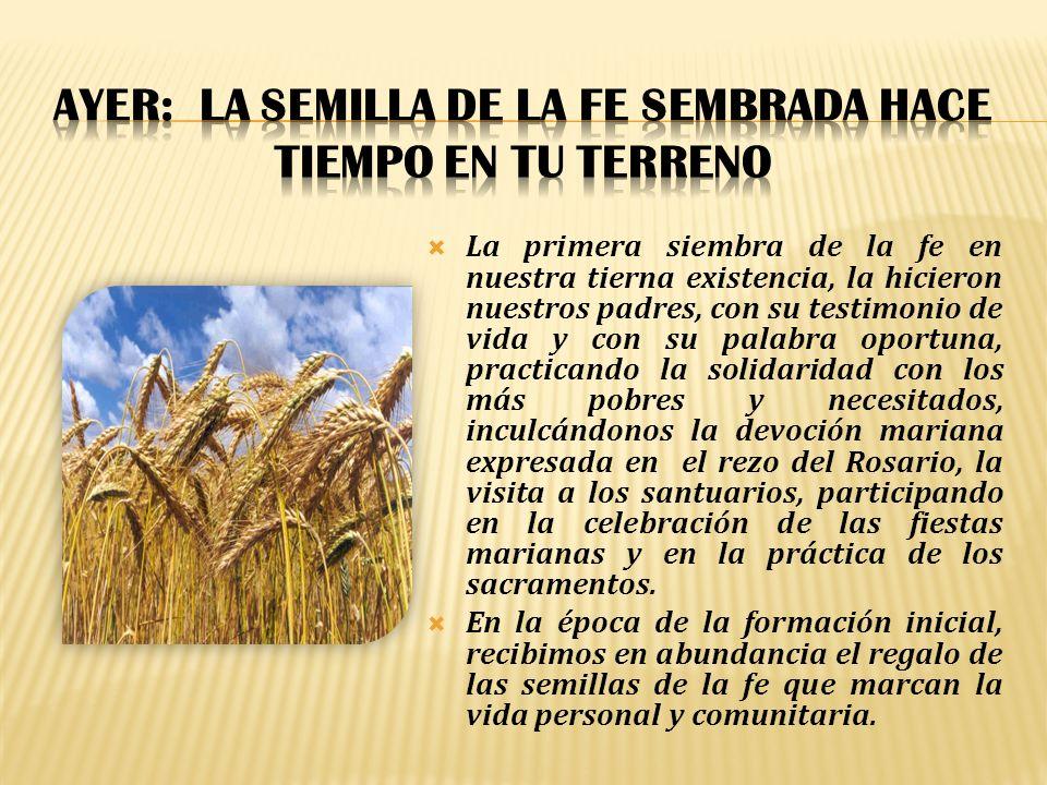 AYER: La semilla de la fe sembrada hace tiempo en tu terreno