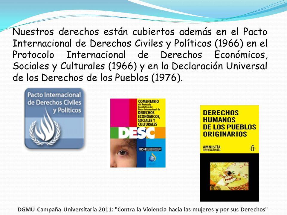 Nuestros derechos están cubiertos además en el Pacto Internacional de Derechos Civiles y Políticos (1966) en el Protocolo Internacional de Derechos Económicos, Sociales y Culturales (1966) y en la Declaración Universal de los Derechos de los Pueblos (1976).
