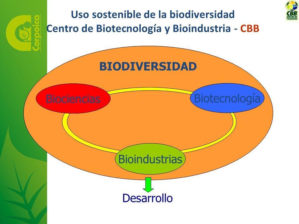 Uso sostenible de la biodiversidad Centro de Biotecnología y Bioindustria - CBB