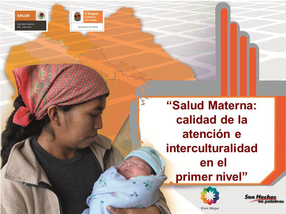 Salud Materna: calidad de la atención e interculturalidad