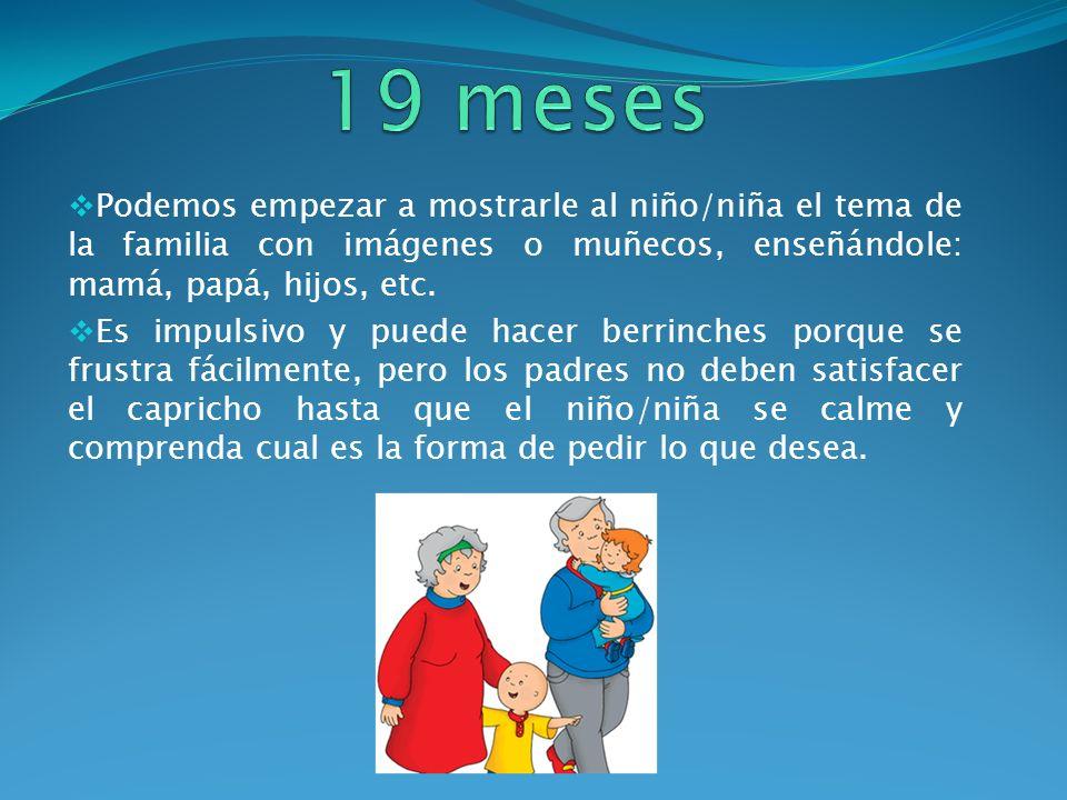 19 meses Podemos empezar a mostrarle al niño/niña el tema de la familia con imágenes o muñecos, enseñándole: mamá, papá, hijos, etc.