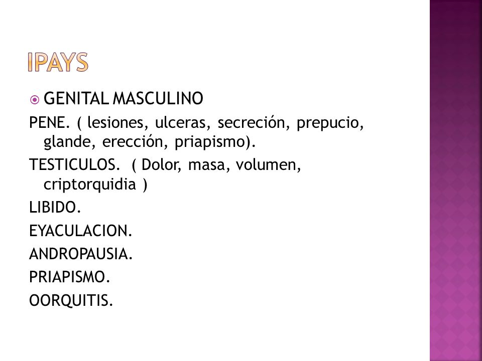 IPAYS GENITAL MASCULINO
