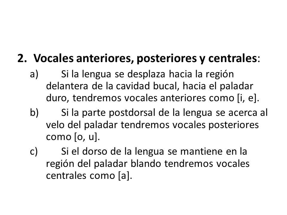 Vocales anteriores, posteriores y centrales: