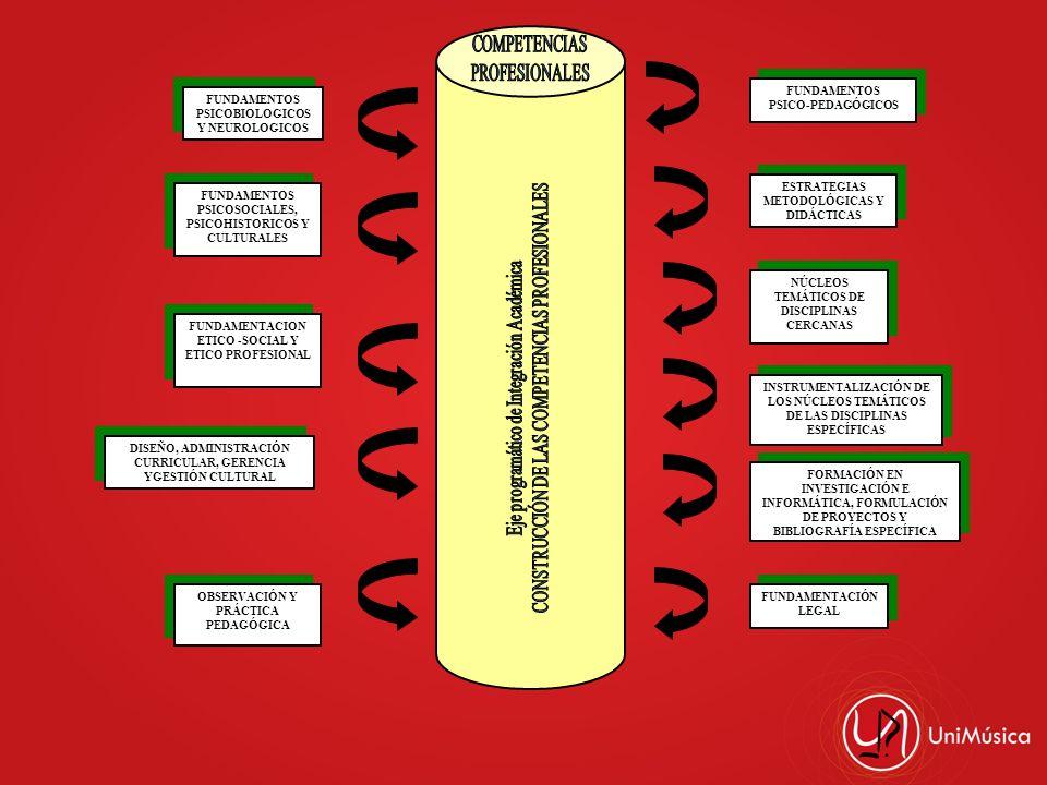 CONSTRUCCIÓN DE LAS COMPETENCIAS PROFESIONALES