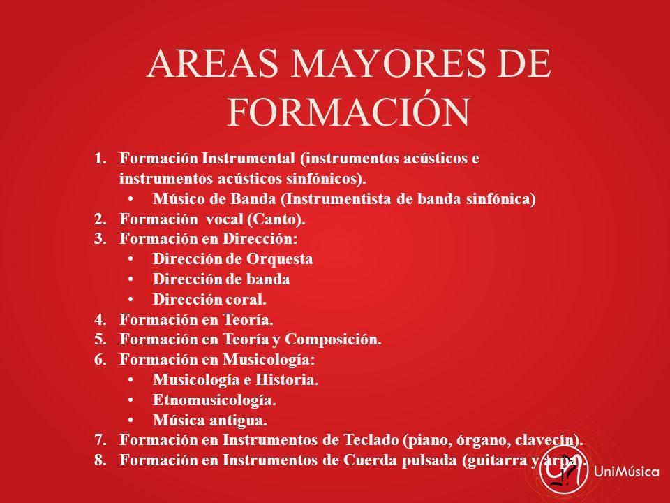 AREAS MAYORES DE FORMACIÓN