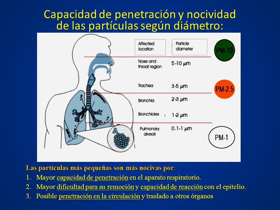 Capacidad de penetración y nocividad de las partículas según diámetro: