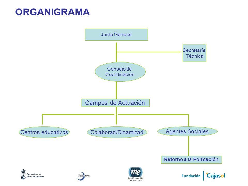 ORGANIGRAMA Campos de Actuación Centros educativos Colaborad/Dinamizad