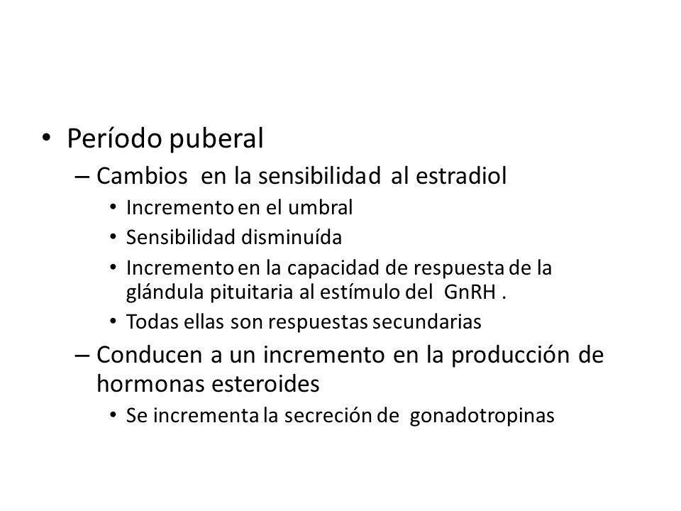 Período puberal Cambios en la sensibilidad al estradiol