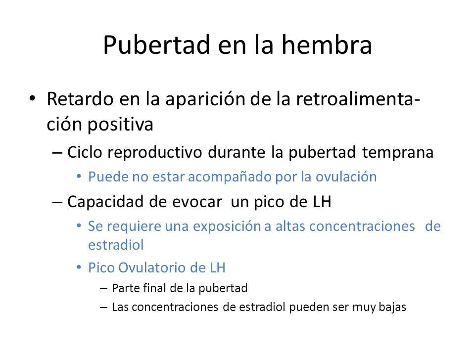 Pubertad en la hembra Retardo en la aparición de la retroalimenta-ción positiva. Ciclo reproductivo durante la pubertad temprana.