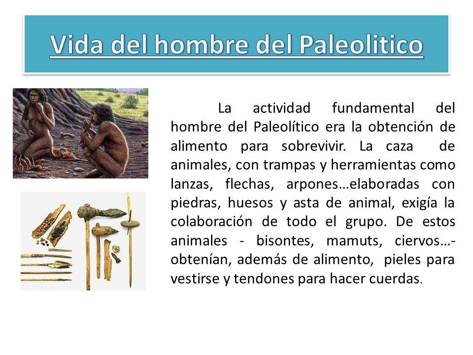 Vida del hombre del Paleolitico