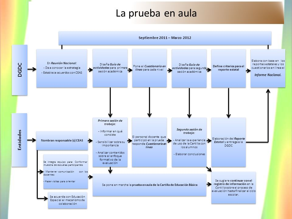 Define criterios para el reporte estatal Nombran responsable (s) CEAS