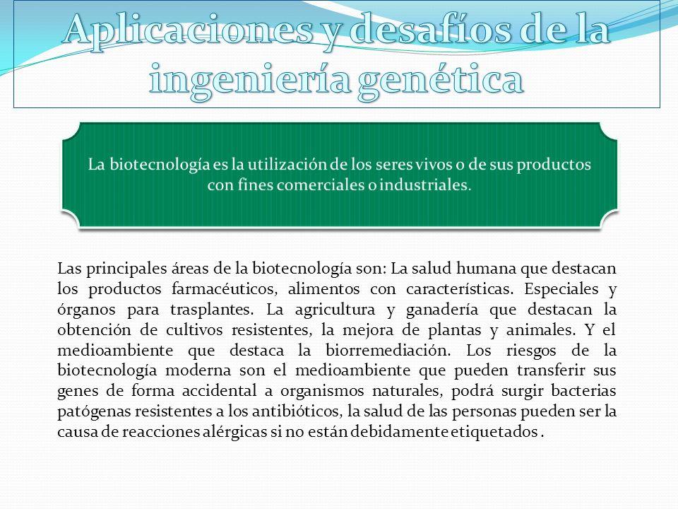 Aplicaciones y desafíos de la ingeniería genética