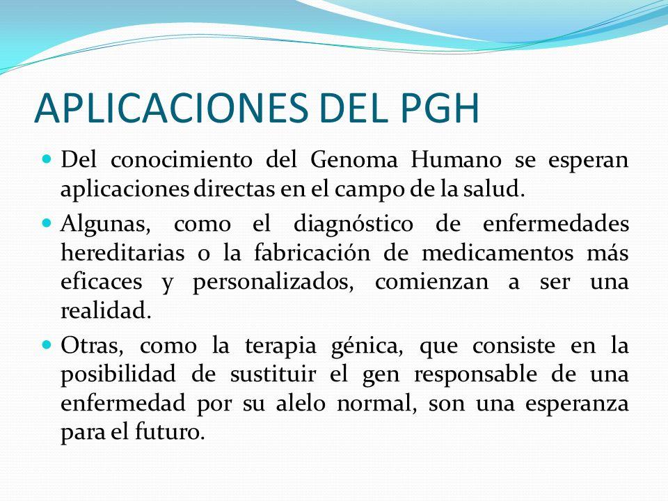 APLICACIONES DEL PGH Del conocimiento del Genoma Humano se esperan aplicaciones directas en el campo de la salud.