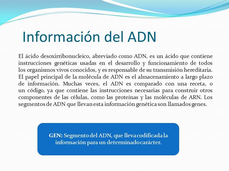Información del ADN