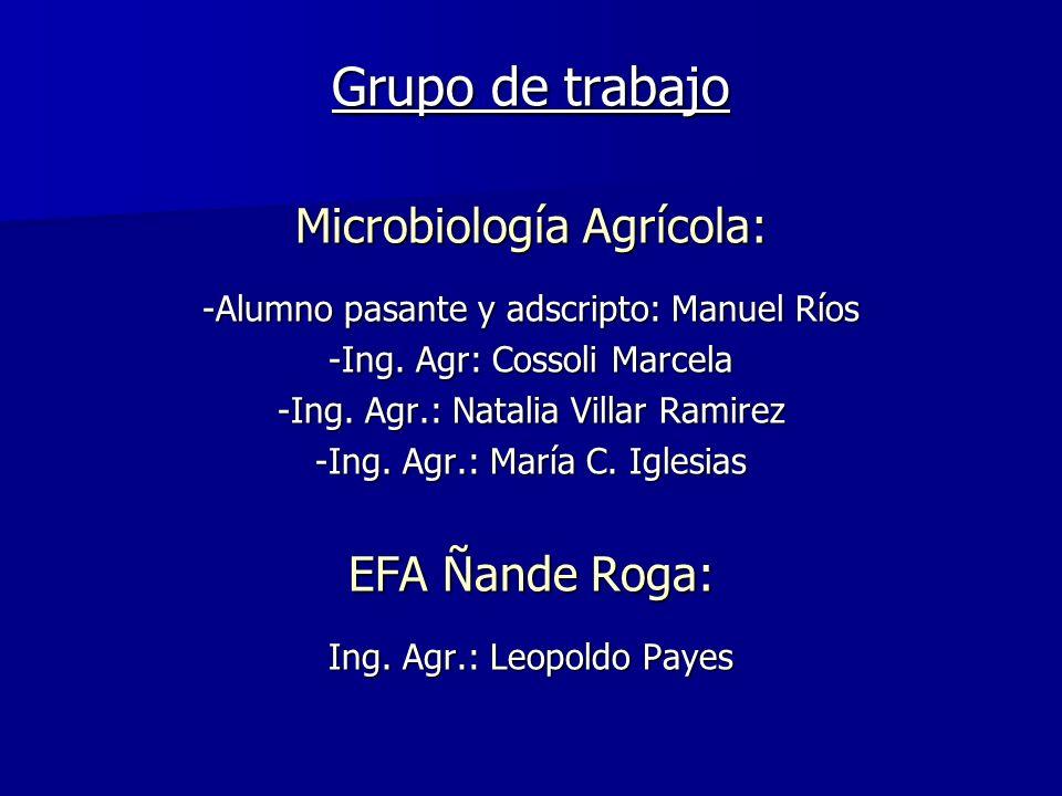 Grupo de trabajo Microbiología Agrícola: EFA Ñande Roga: