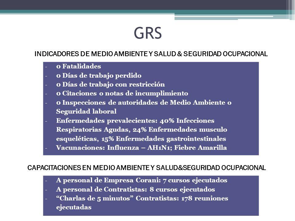 GRS INDICADORES DE MEDIO AMBIENTE Y SALUD & SEGURIDAD OCUPACIONAL