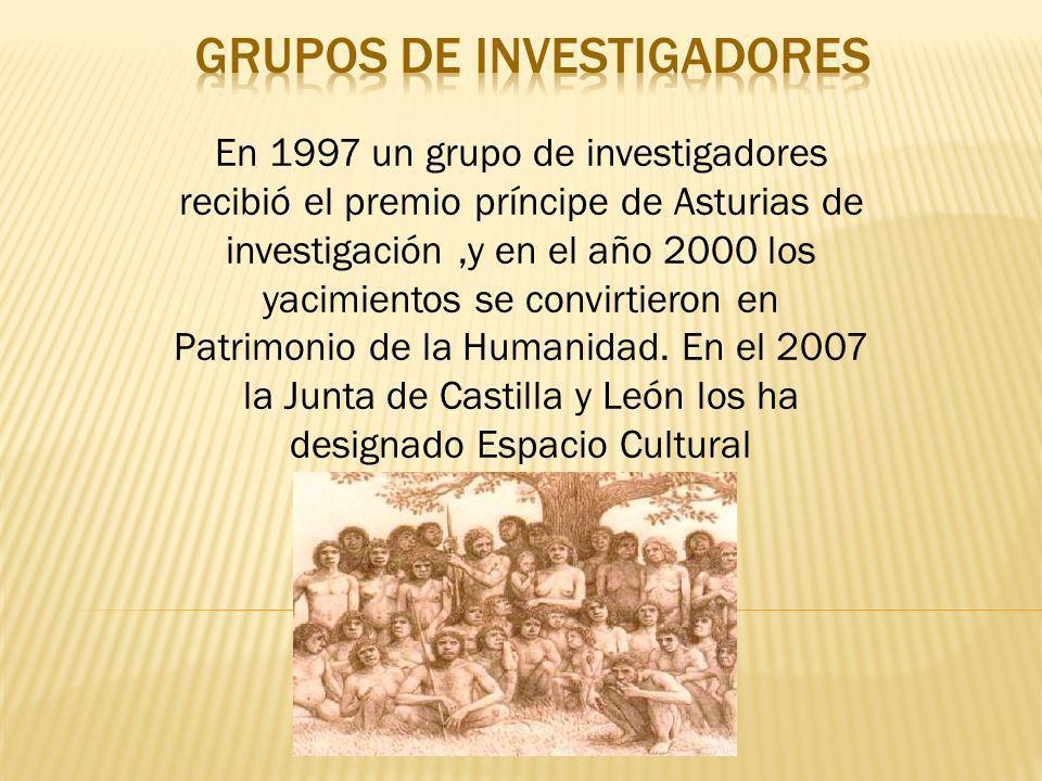 Grupos de investigadores