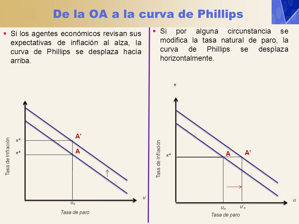 De la OA a la curva de Phillips