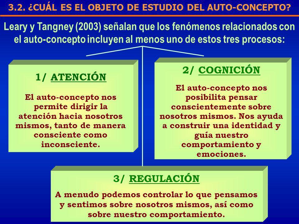 3.2. ¿CUÁL ES EL OBJETO DE ESTUDIO DEL AUTO-CONCEPTO