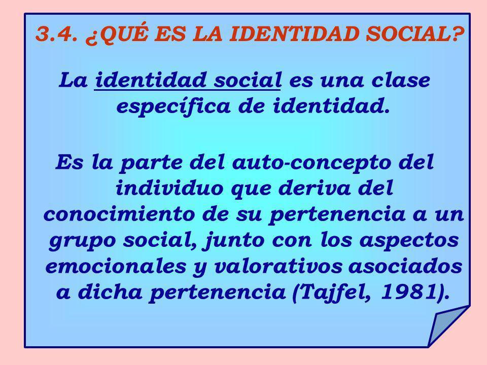 3.4. ¿QUÉ ES LA IDENTIDAD SOCIAL