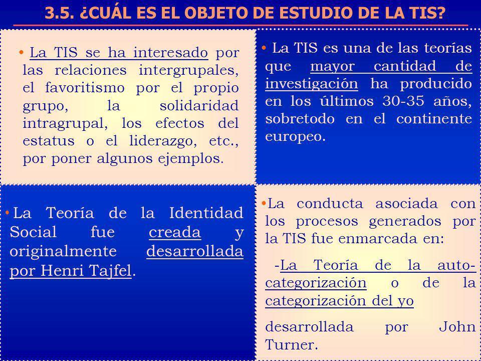 3.5. ¿CUÁL ES EL OBJETO DE ESTUDIO DE LA TIS