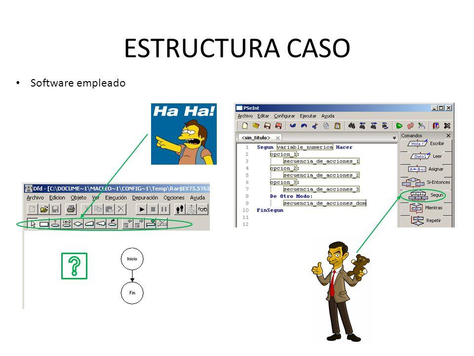 ESTRUCTURA CASO Software empleado