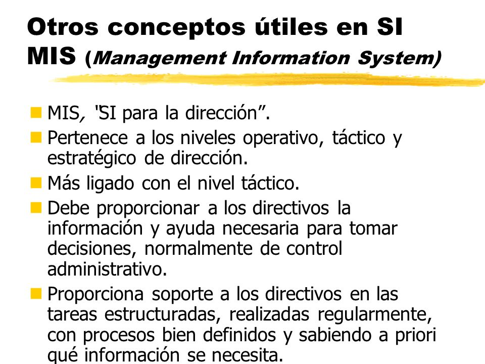 Otros conceptos útiles en SI MIS (Management Information System)