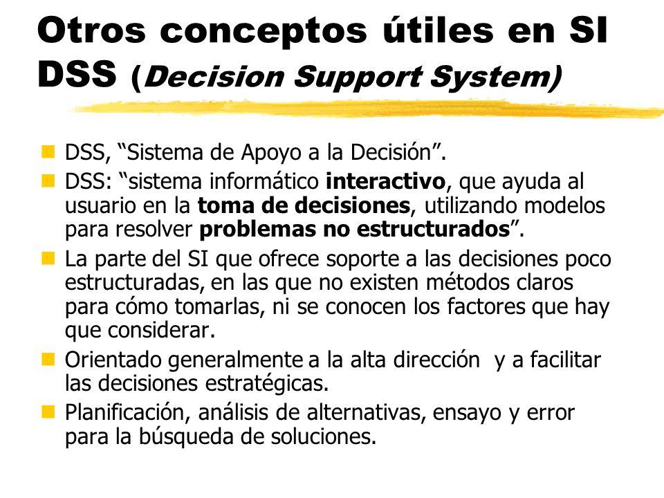Otros conceptos útiles en SI DSS (Decision Support System)