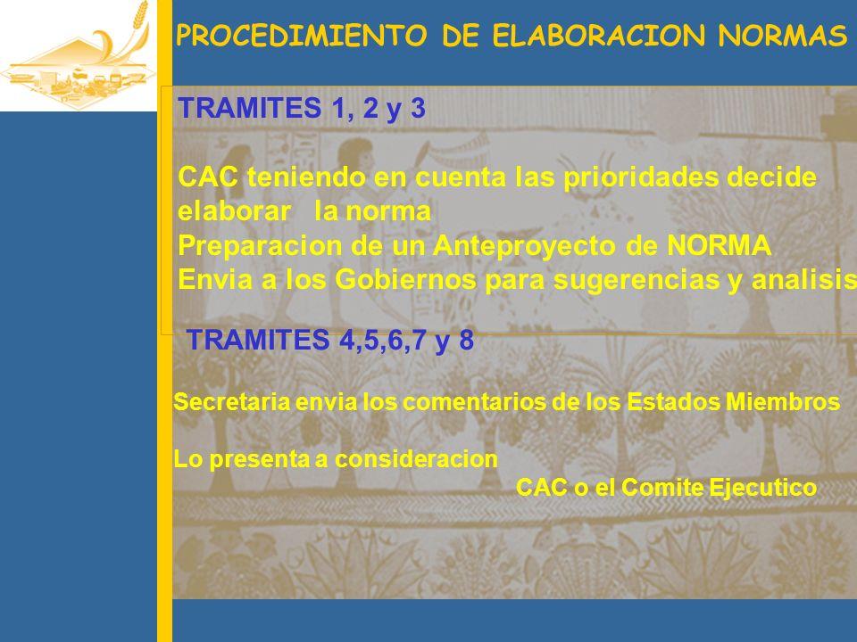 PROCEDIMIENTO DE ELABORACION NORMAS
