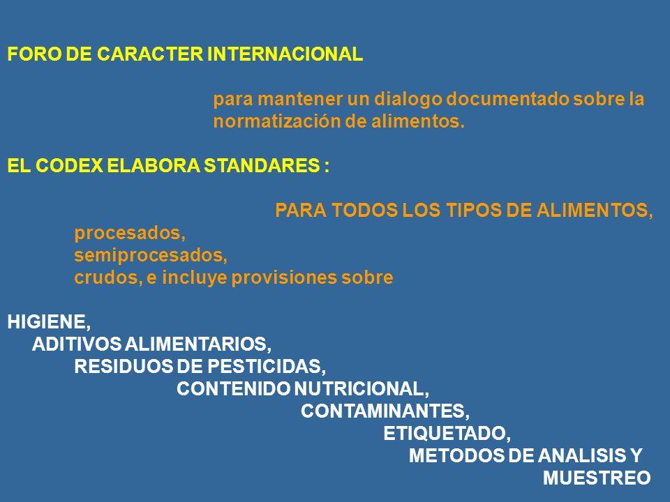 FORO DE CARACTER INTERNACIONAL