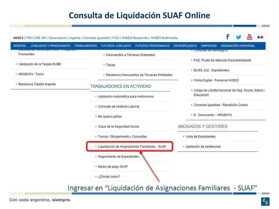Consulta de Liquidación SUAF Online