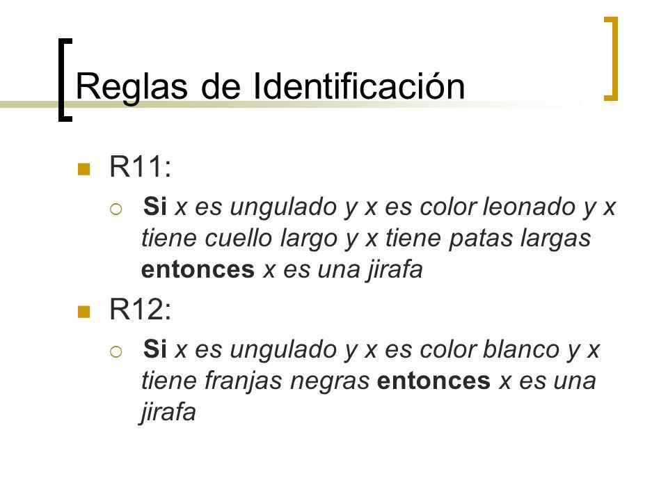 Reglas de Identificación