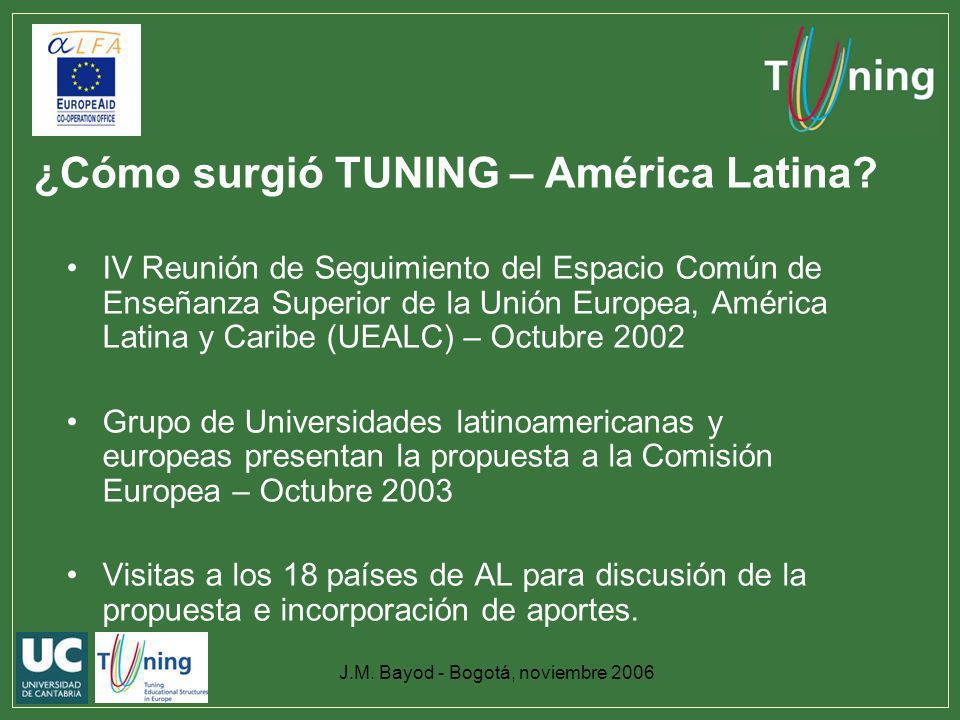 ¿Cómo surgió TUNING – América Latina