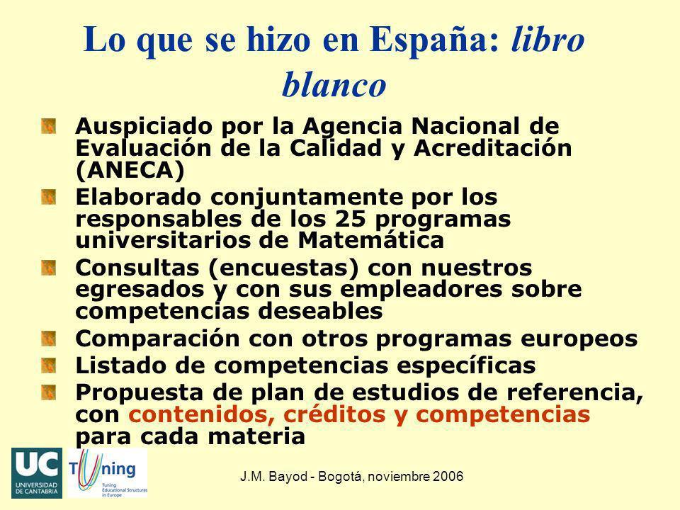 Lo que se hizo en España: libro blanco