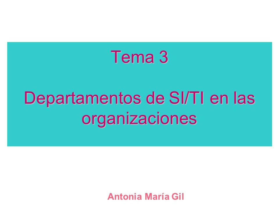 Tema 3 Departamentos de SI/TI en las organizaciones