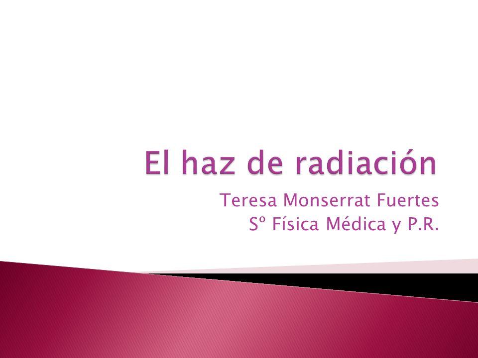 Teresa Monserrat Fuertes Sº Física Médica y P.R.
