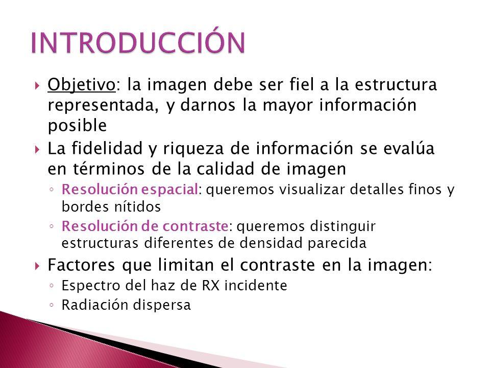 INTRODUCCIÓN Objetivo: la imagen debe ser fiel a la estructura representada, y darnos la mayor información posible.