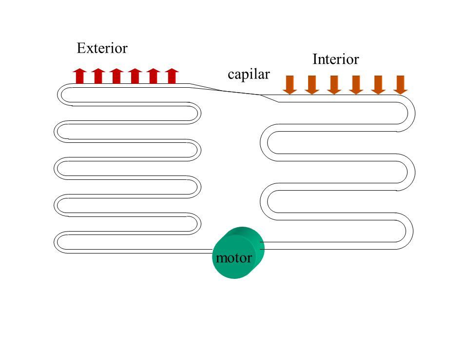 Exterior Interior capilar motor