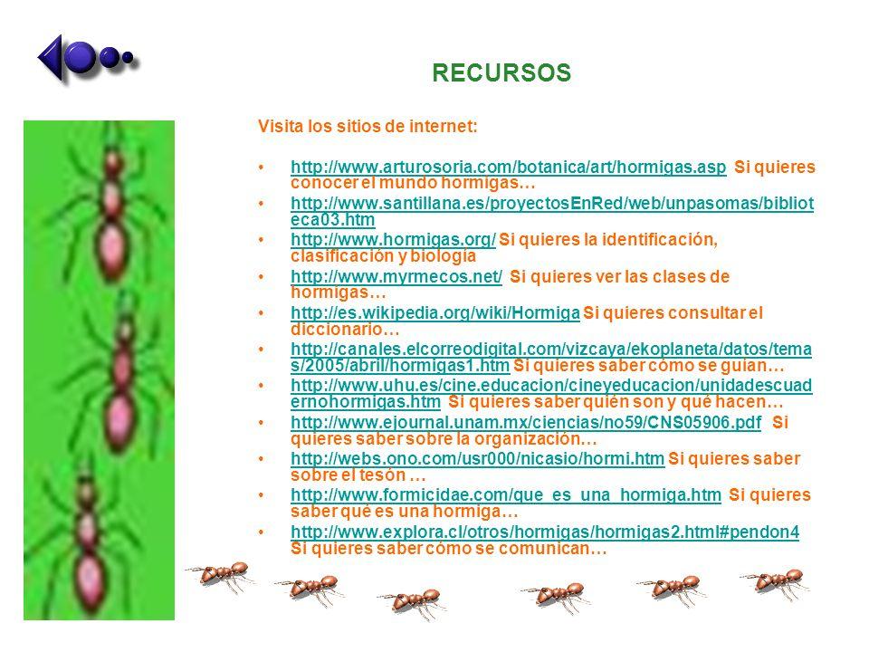 RECURSOS Visita los sitios de internet: http://www.arturosoria.com/botanica/art/hormigas.asp Si quieres conocer el mundo hormigas…