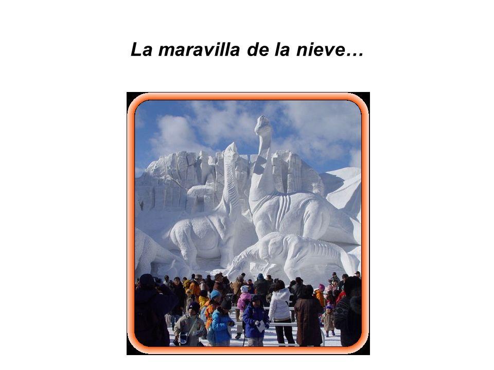 La maravilla de la nieve…