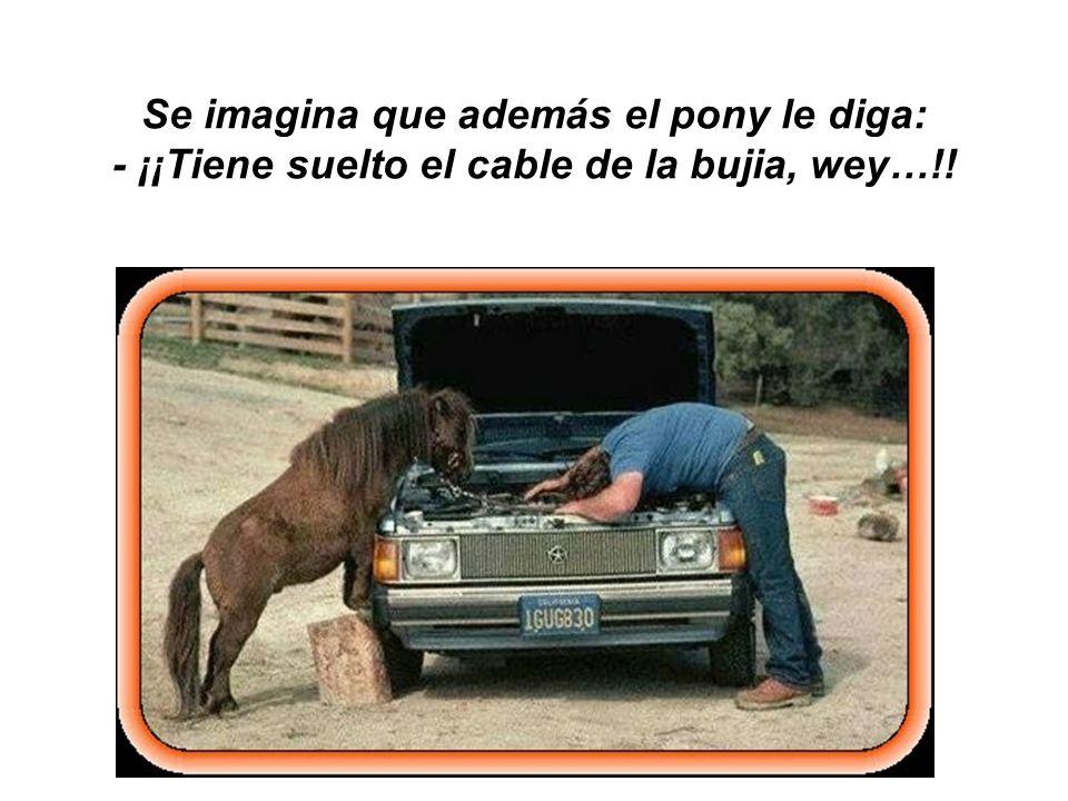 Se imagina que además el pony le diga: - ¡¡Tiene suelto el cable de la bujia, wey…!!