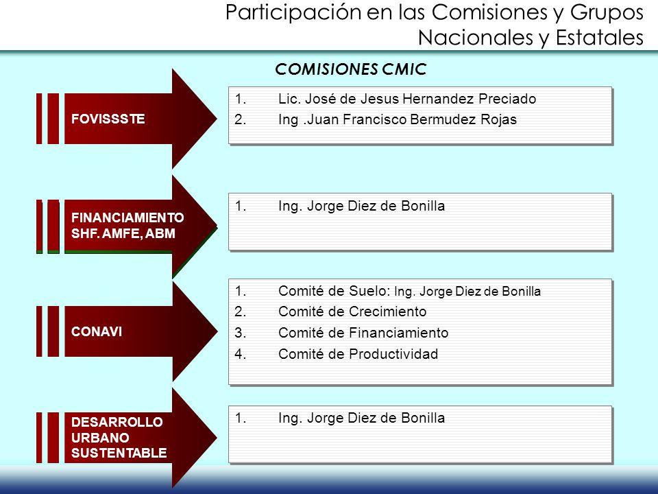 Participación en las Comisiones y Grupos Nacionales y Estatales