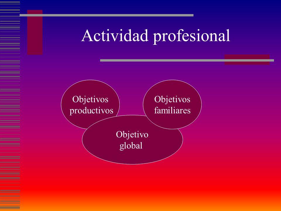 Actividad profesional
