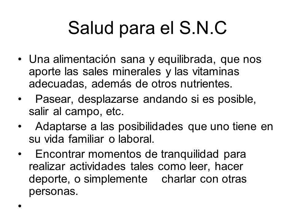 Salud para el S.N.C Una alimentación sana y equilibrada, que nos aporte las sales minerales y las vitaminas adecuadas, además de otros nutrientes.