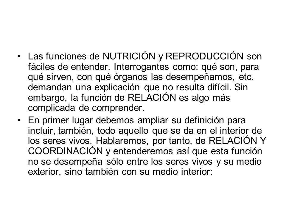 Las funciones de NUTRICIÓN y REPRODUCCIÓN son fáciles de entender