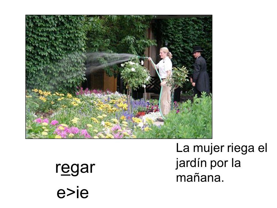 La mujer riega el jardín por la mañana.