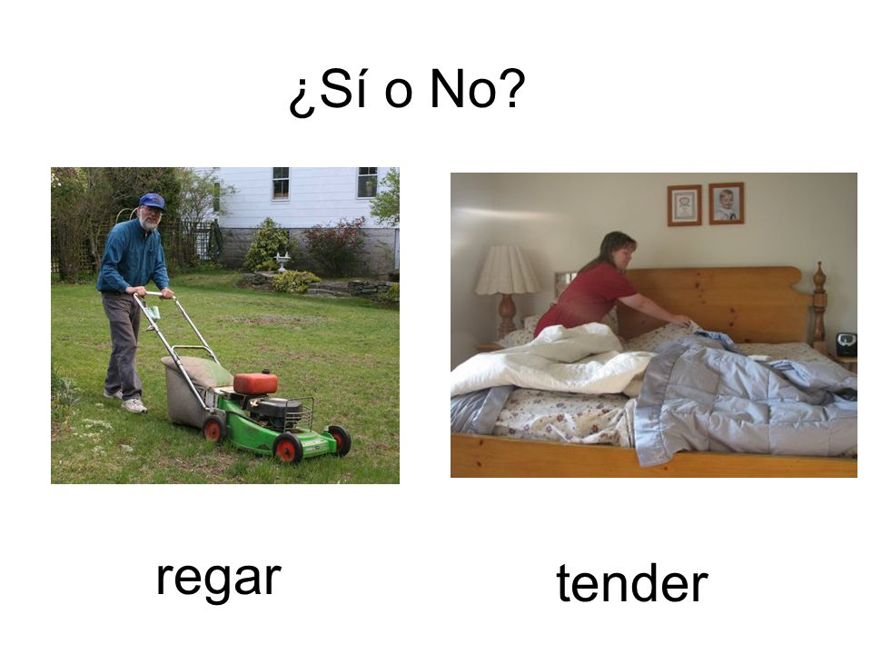 ¿Sí o No regar tender
