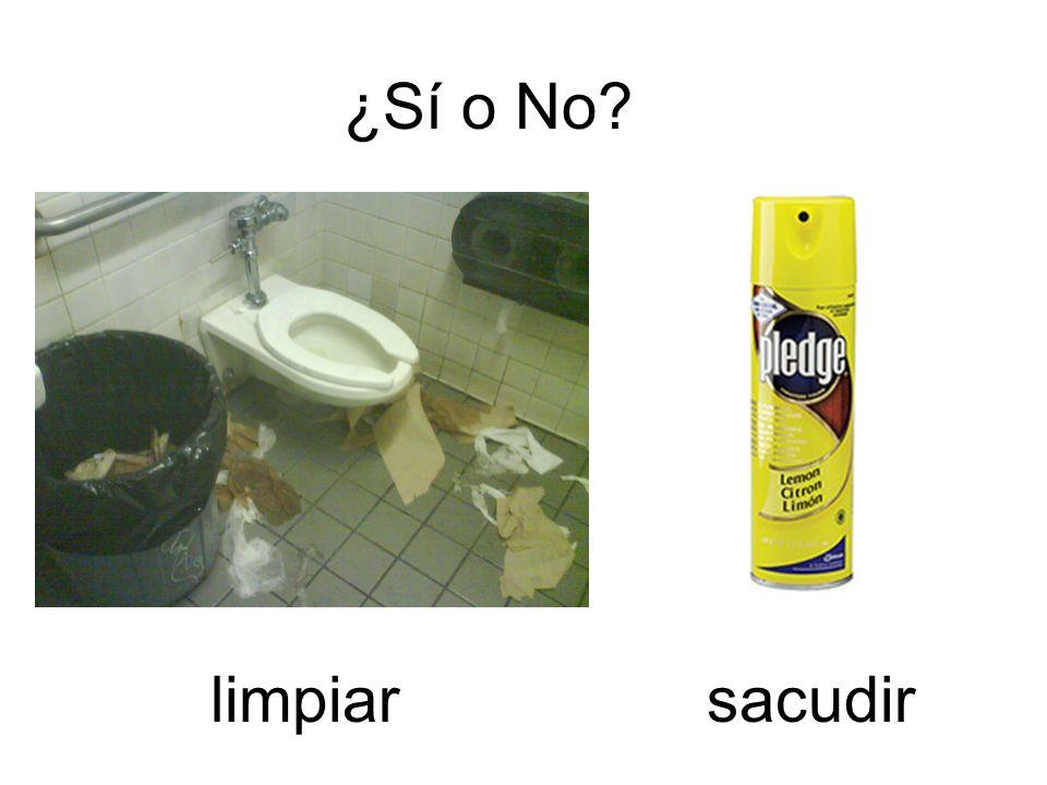 ¿Sí o No limpiar sacudir