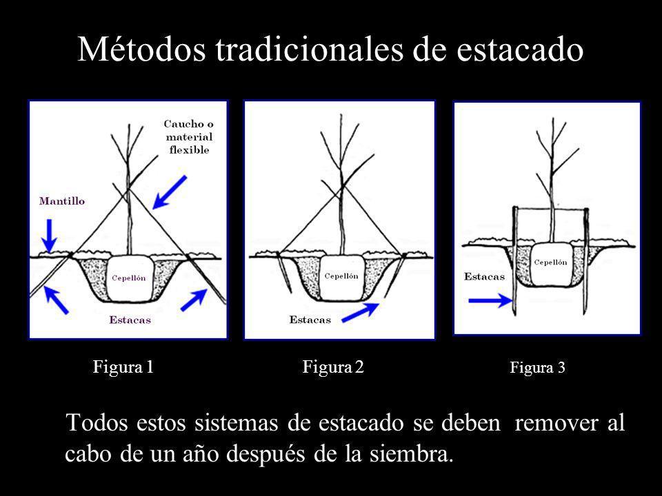 Métodos tradicionales de estacado